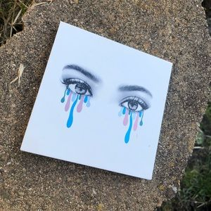Kylie Jenner (Used Once ) Eye shadow Pallet.